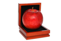 Red apple. In jewelry box Stock Images