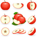 Red apple. Vector illustration of red apple Royalty Free Stock Photography