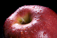 Red apple. With water drops on black background Stock Photography