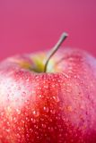 Red apple. On red background, focus on waterdrops Stock Photos