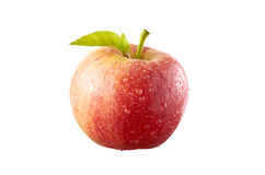 Red Apple. With water drop on clean background Stock Images