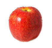 Red apple. On white background Royalty Free Stock Photography