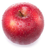 Red apple. With drops on white background Stock Image