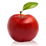 Red apple. On a white background, vector Royalty Free Stock Image