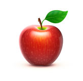 Red apple. Vector illustration of detailed big shiny red apple Royalty Free Stock Images