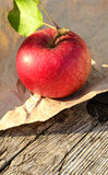 Red apple... Stock Image
