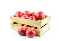 Red apple. Red Elstar apples in a wooden crate, on a white background stock photography