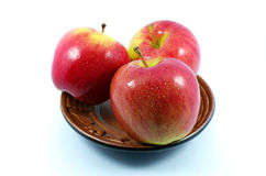 Red Apple. Three Apples on ceramic cup Royalty Free Stock Photo