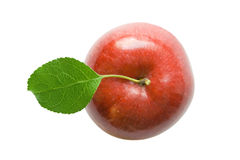 Free Red Apple Royalty Free Stock Image - 3134376