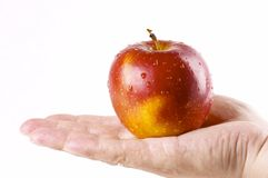 Red apple. In a hand of the person Stock Photos