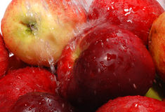 Red apple. To wash apple, red apple Royalty Free Stock Photography