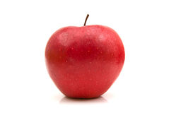 Red apple. Isolated on the white background stock images