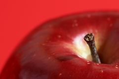 Free Red Apple Royalty Free Stock Photos - 547988