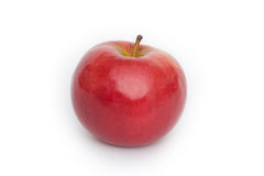 Red apple. On white background stock photography
