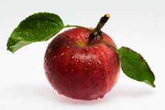 Red apple. Fresh red apple with leaves. Studio isolated Royalty Free Stock Photos
