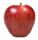 Red apple. On white background Royalty Free Stock Photos