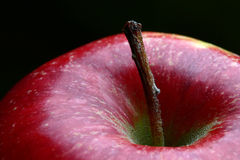 Red apple. Detail of a bright red apple with focus on the stem royalty free stock photography