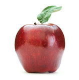 Red apple. On white background