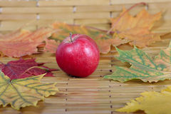 Red apple against autumn leaves. Red apple on a bamboo napkin removed close up against autumn leaves Royalty Free Stock Photos