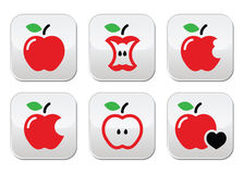 Red apple, apple core, bitten, half  buttons Stock Image