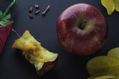 Red Apple and Apple Stump Stub Core Composition On Black Craft Paper Background.  royalty free stock photography