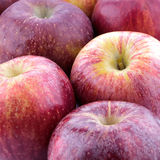 Red apple Royalty Free Stock Photography