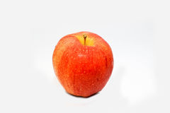 Red Apple royalty free stock images
