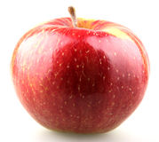 Red apple bite Stock Photography