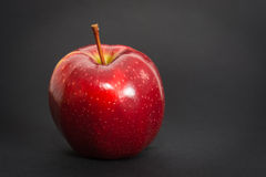 Red apple on the black background.  royalty free stock photography