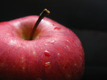 Red apple on black - macro Stock Photography