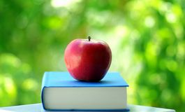 A Red Apple On A Book. Of blue color Stock Photography