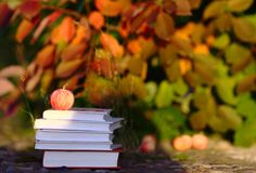 Red Apple on Books Royalty Free Stock Photography