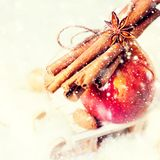 Red Apple Branch Cinnamon Small Sledge royalty free stock photo