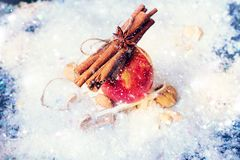 Red Apple Branch Sticks Cinnamon Anise Tied up Cord stock photography