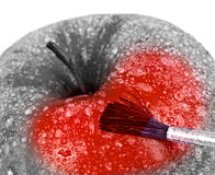 Red apple and brush. Royalty Free Stock Photos