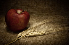 Red apple and cereals Royalty Free Stock Photography