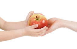 Red apple in child and mommy hands Royalty Free Stock Image
