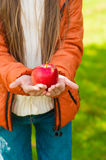 Red apple in the children's hands in a park Stock Image