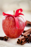Red  apple with cinnamon and anise. Red apple with cinnamon sticks and anise stars Royalty Free Stock Image