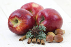 Red apple, cinnamon stick, anise, nuts. Close up of red apple, cinnamon sticks, nuts, anise Royalty Free Stock Photography