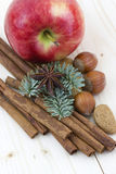 Red apple, cinnamon stick, anise, nuts. Close up of red apple, cinnamon sticks, nuts, anise Royalty Free Stock Images