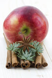 Red apple, cinnamon sticks, anise. Close up of red apple, cinnamon sticks, anise Royalty Free Stock Images