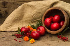 Red apple in a clay pot on a background of burlap Stock Photos