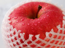 Red apple close-up Stock Photography