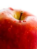 Red apple close-up Royalty Free Stock Image