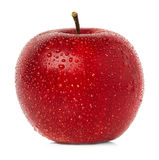 Red apple close-up Stock Image