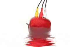 Red apple connection Stock Photography