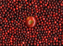 Red apple and cranberries Stock Photo
