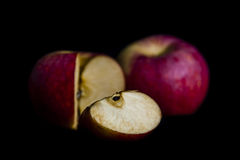 Red apple in dark Stock Photography