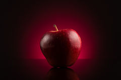 Red apple on dark red background Royalty Free Stock Photo